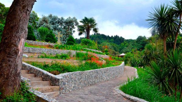 Batumi-botanicheskiy-sad2